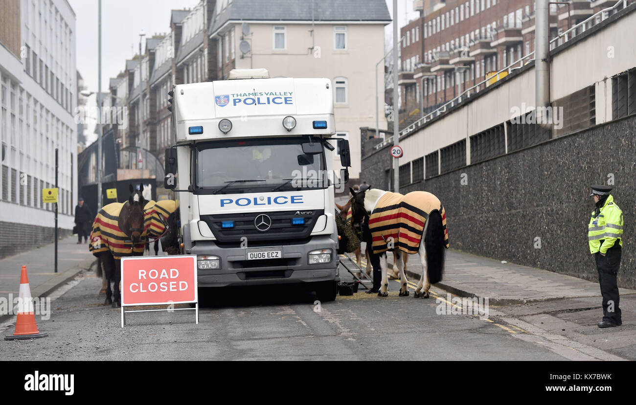 Brighton, UK. 8th Jan, 2018. Police horses from Thames Valley Force at the back of Brighton Police Station being - Stock Image