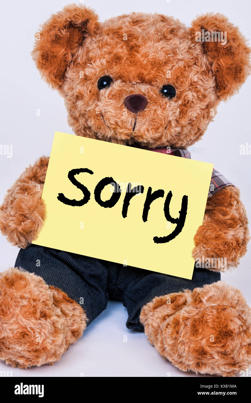Cute teddy bear holding a yellow sign that reads Sorry isolated on a white background - Stock Image