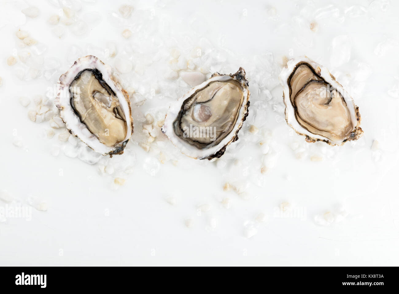 Overhead photo of three oysters with copy space - Stock Image