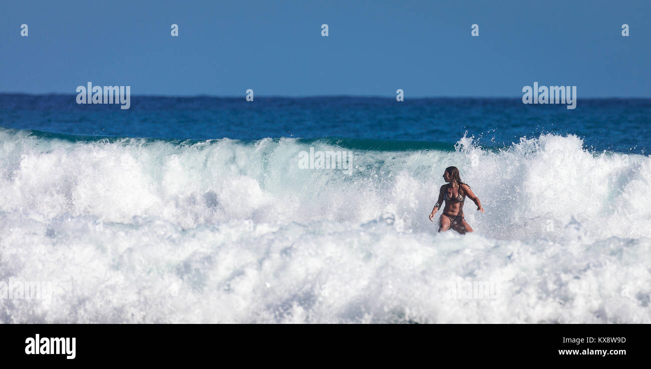 Surfer school. Beautiful young woman in swimsuit goes into ocean in hot summer day. Surfer on the wave. beautiful - Stock Image