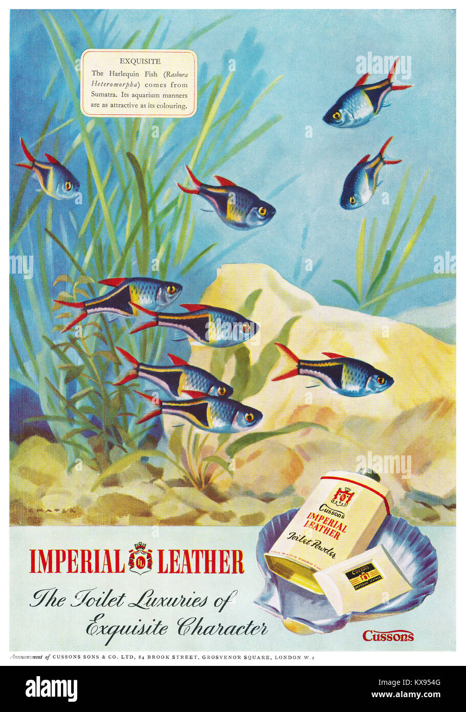 1950 British advertisement for Cussons Imperial Leather soap and talcum powder, with an illustration of Harlequin - Stock Image