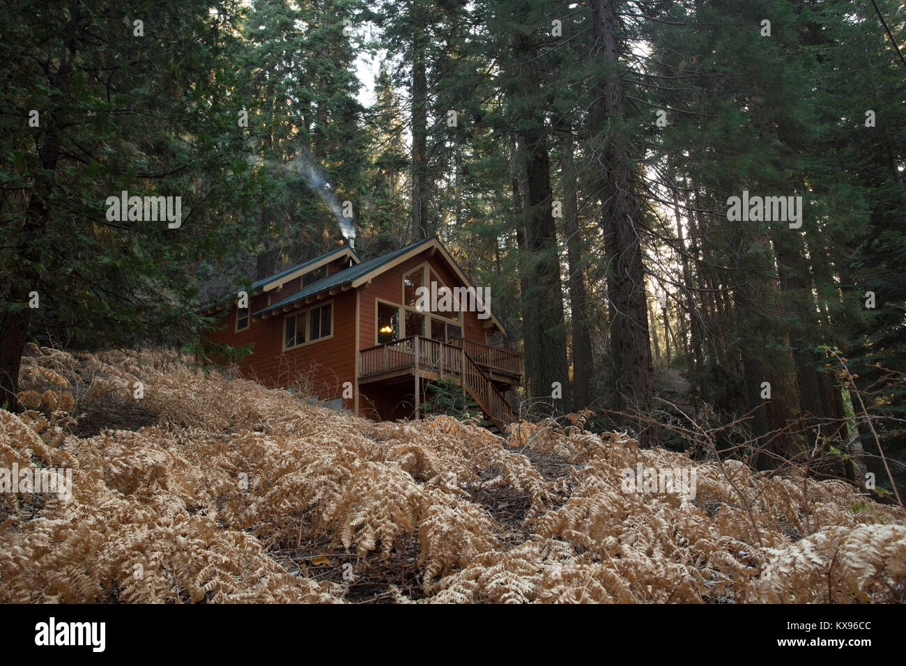 Cozy cabin in the forest at Sequioa Crest, California - Stock Image