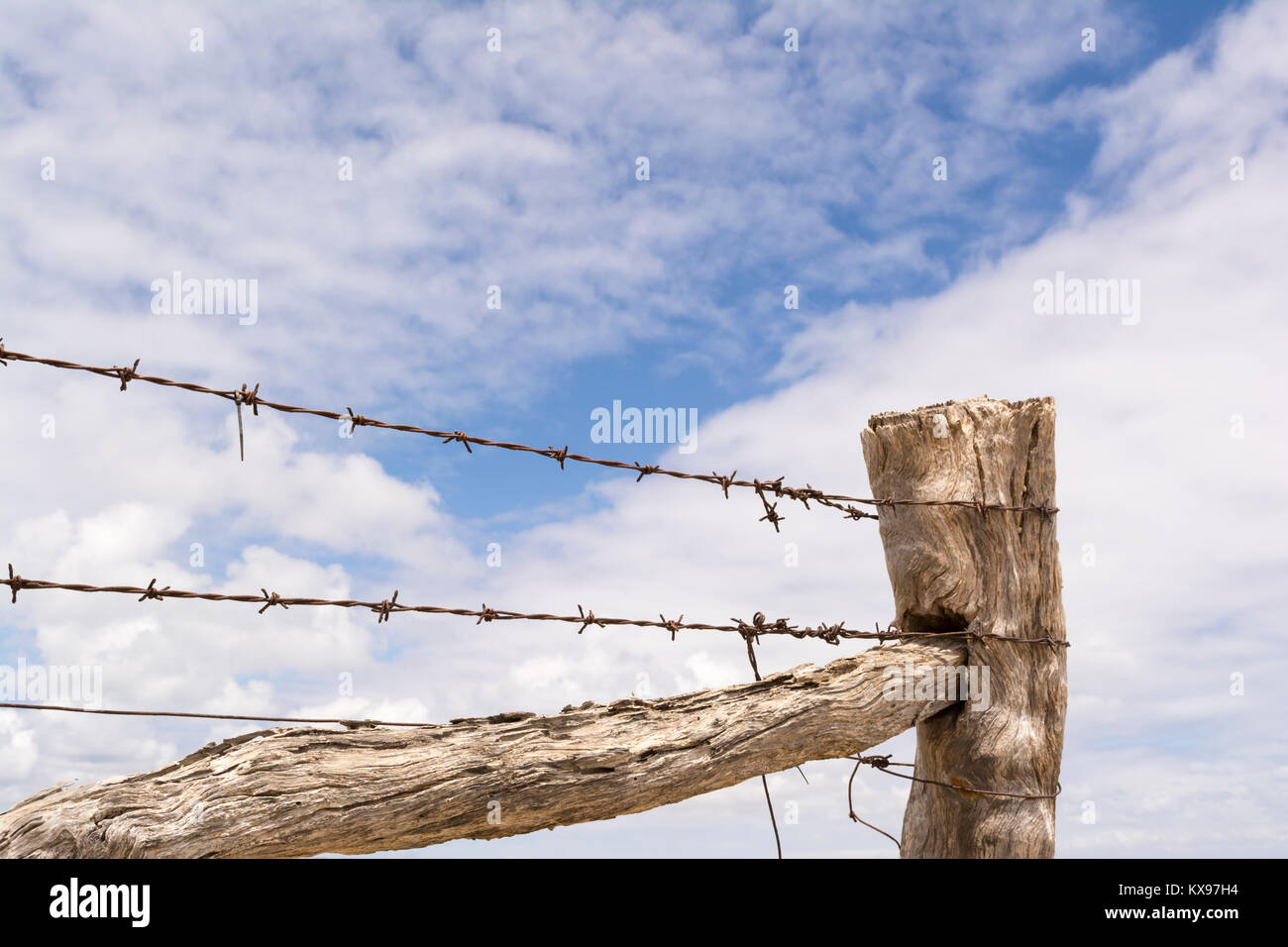 Old rural barbed wire fence with wooden posts with a clouded sky as it's background, found on the Fleurieu Peninsula - Stock Image