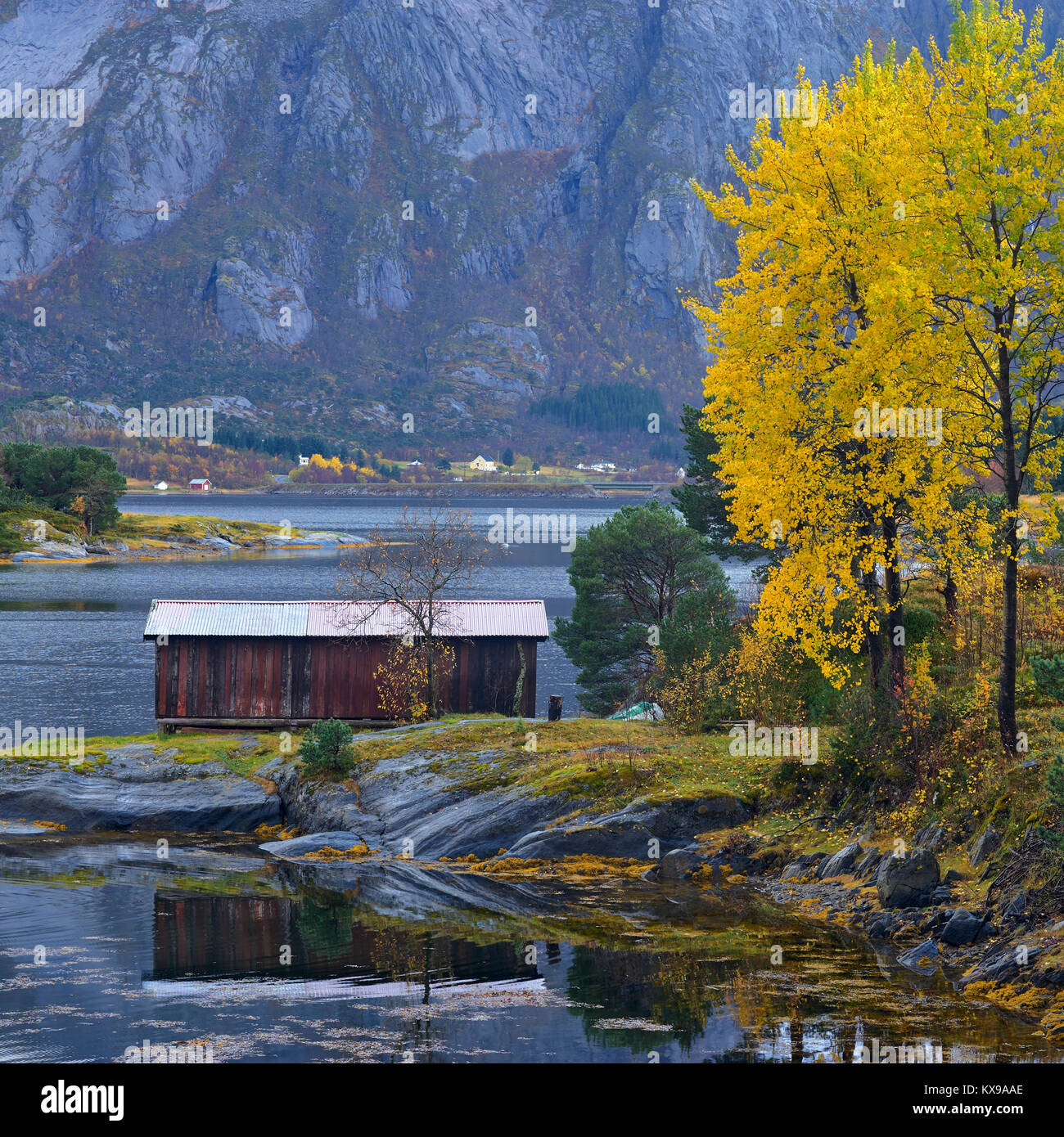 Autumnal coastal scene on Gronoy, Meloy, Nordland, Norway - Stock Image