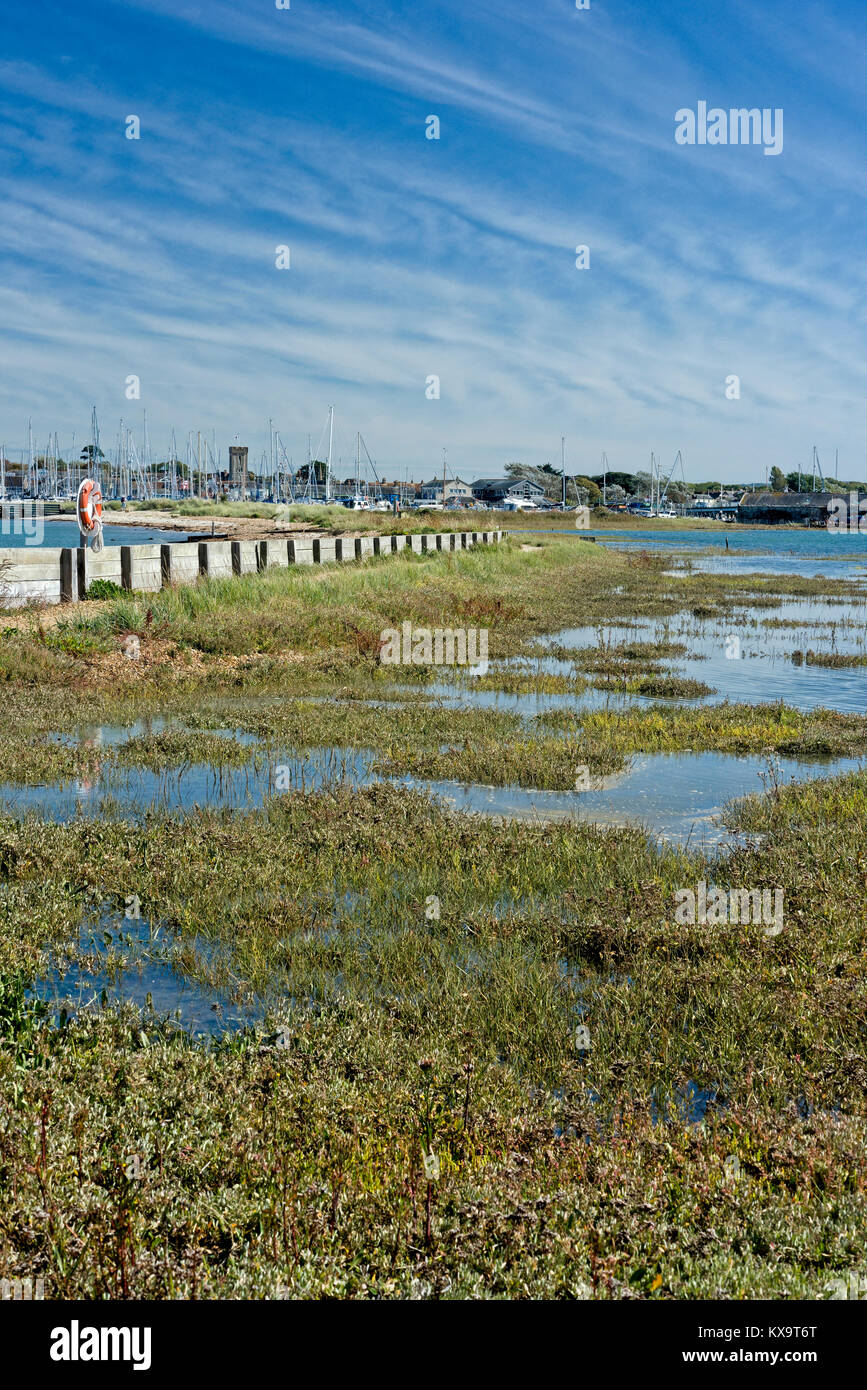 Salt marsh trapped behind a sea wall and higher shingle beach at Yarmouth on the Isle of Wight UK. The sea water - Stock Image