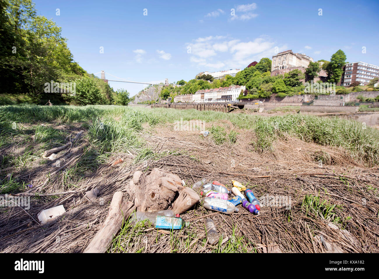 Re. 'City To Sea', a campaign to rid Bristol of plastic bottle waste - waste bottles on the banks of the Avon in - Stock Image