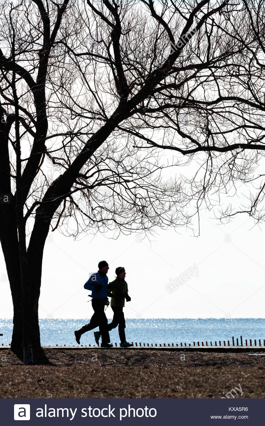 running run jog jogging exercise exercising runners joggers couple people tree trees Beaches The Beach Toronto Ontario - Stock Image