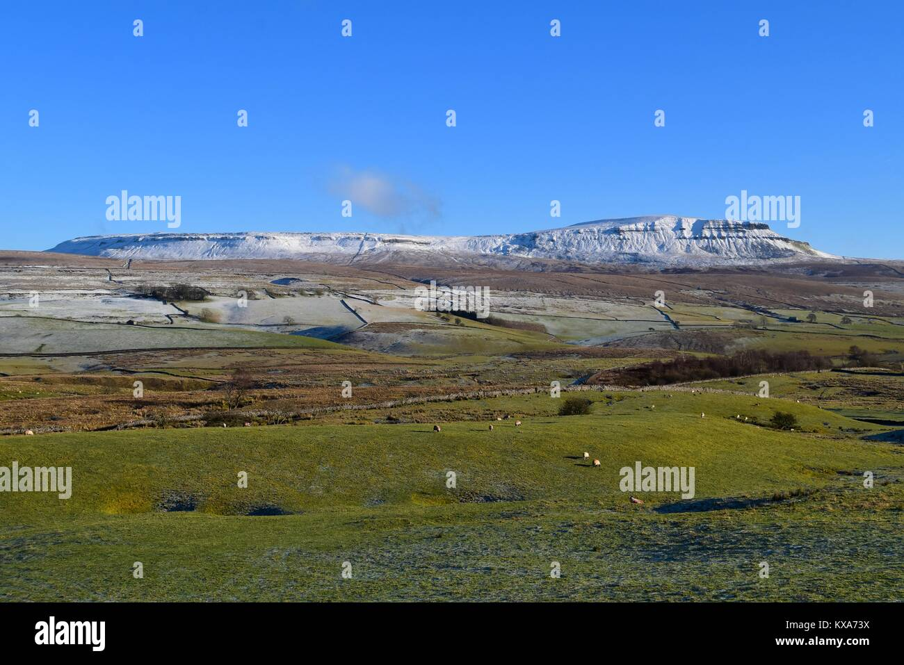 Snow topped Pen-y-ghent - Stock Image