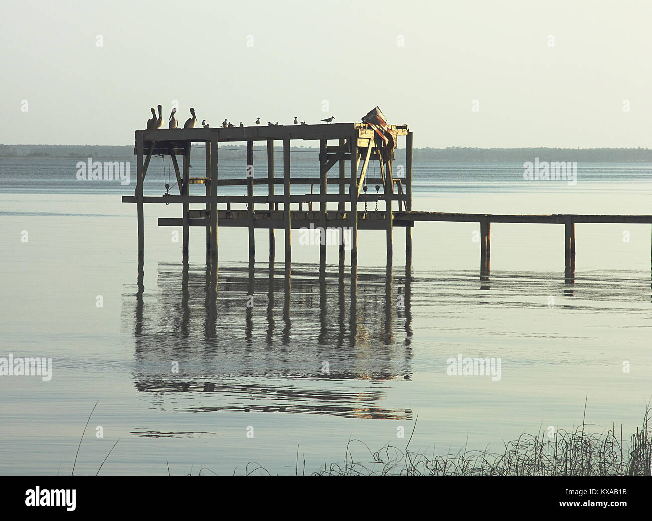 Florida, Apalachicola Bay. Morning view on Gulf of Mexico - Stock Image