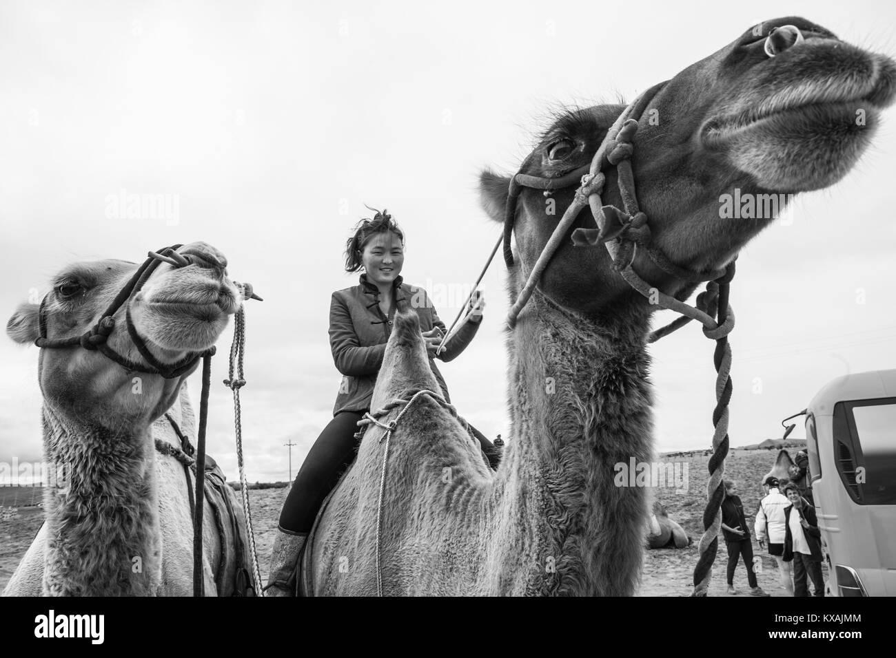 Mongolian woman riding camel, Kharakhorin, Mongolia - Stock Image