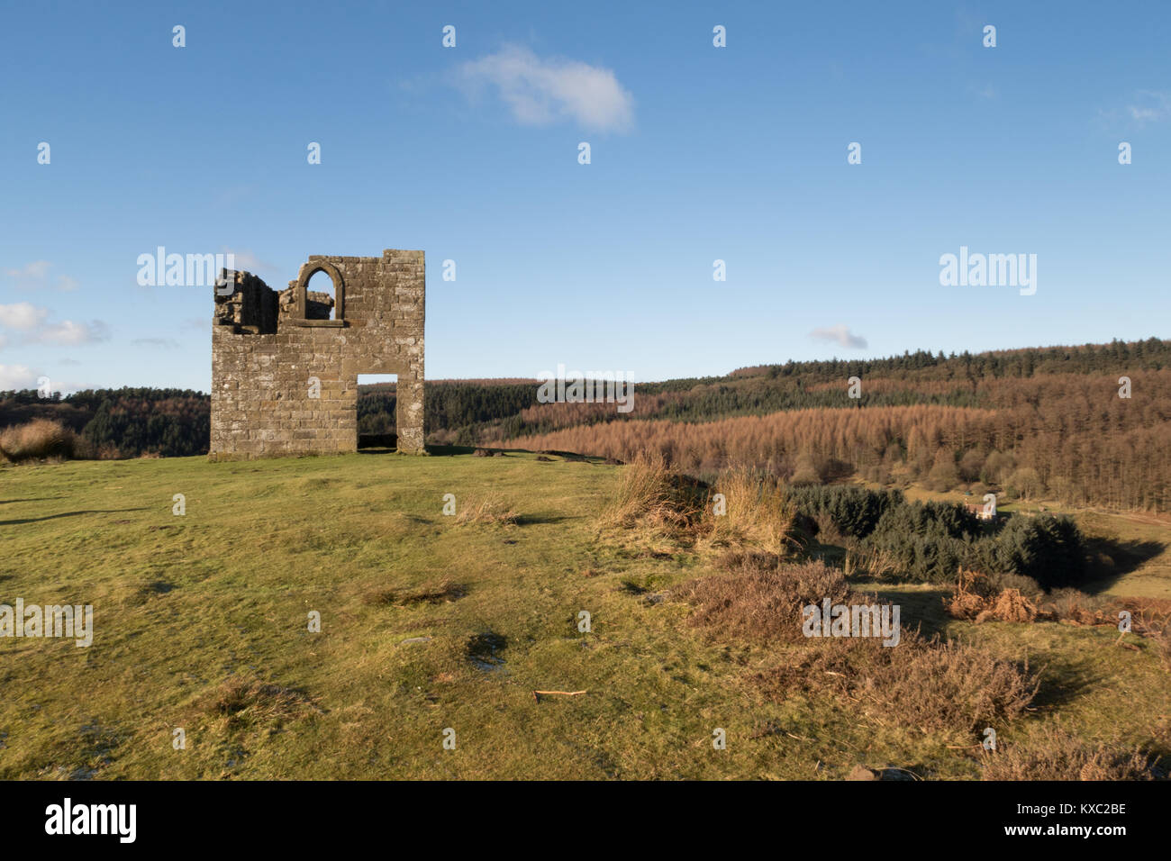 Skelton Tower in the North York Moors - Stock Image