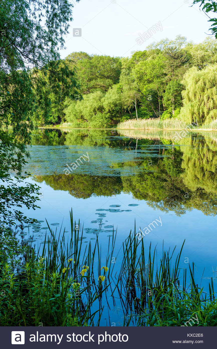 Grenadier Pond in High Park in Toronto Ontario Canada water reflection reflected tranquil placid calm still smooth - Stock Image