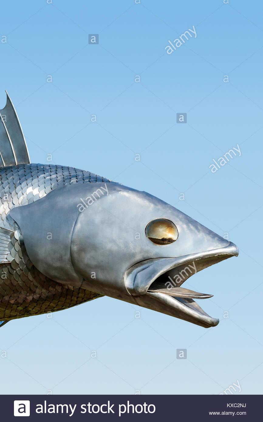 Pisces Pete stainless steel 12 foot long metal fish Walleye roadside attraction in Pisces Park Hastings Ontario - Stock Image