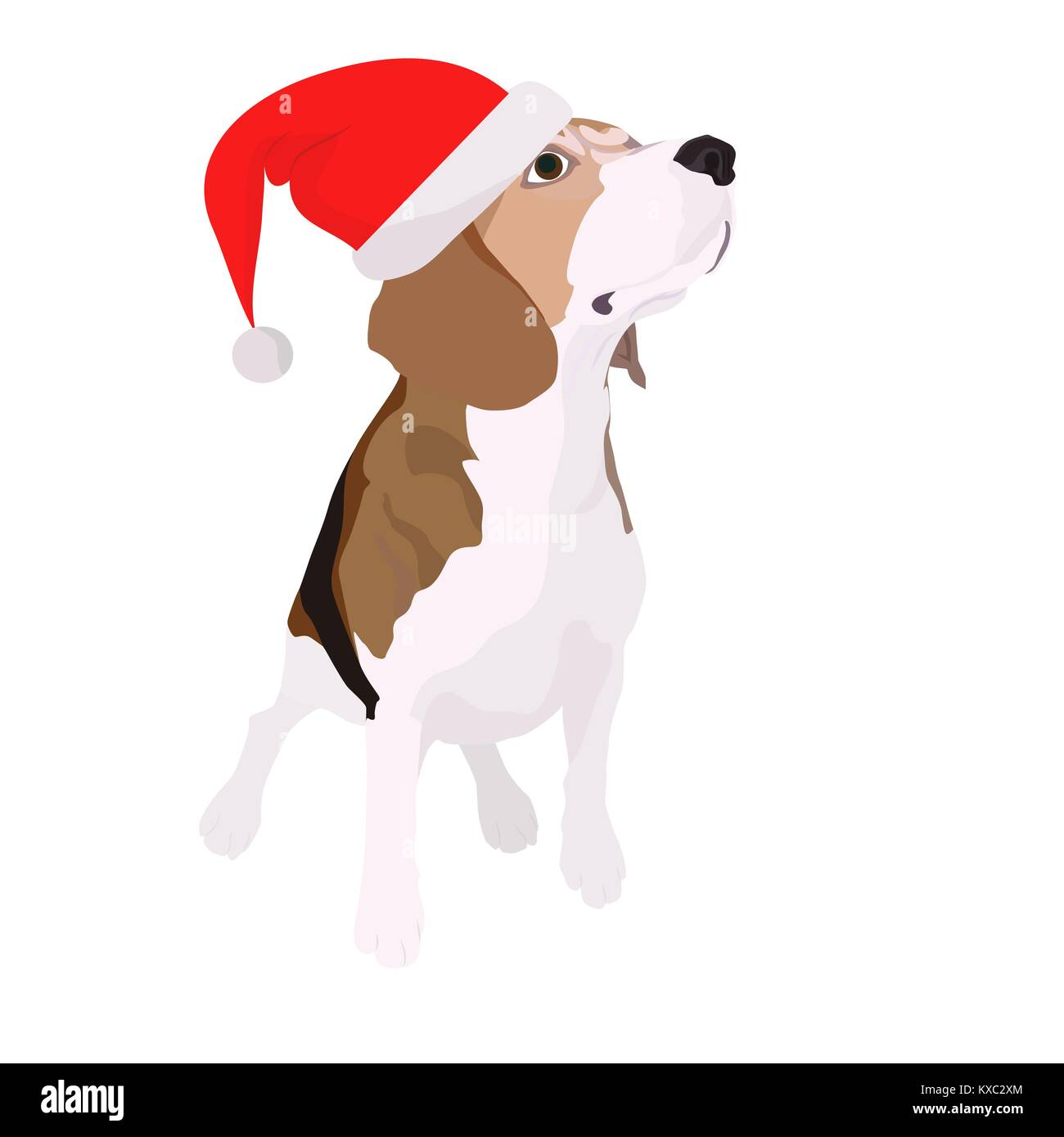 hand-painted beagle dog in a New Year's cap - Stock Image