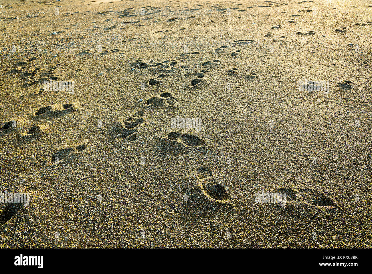 Footsteps on a sandy beach - Stock Image
