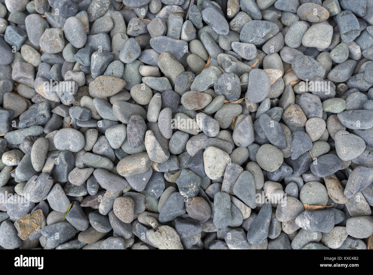 Grey River Stone Pebbles On Ground For Decorative Garden