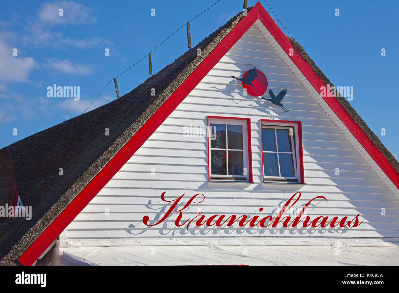 Gable of Crane house at Zingster Strom, thatched-roof house, Zingst, Fishland, Mecklenburg-Western Pomerania, Baltic - Stock Image
