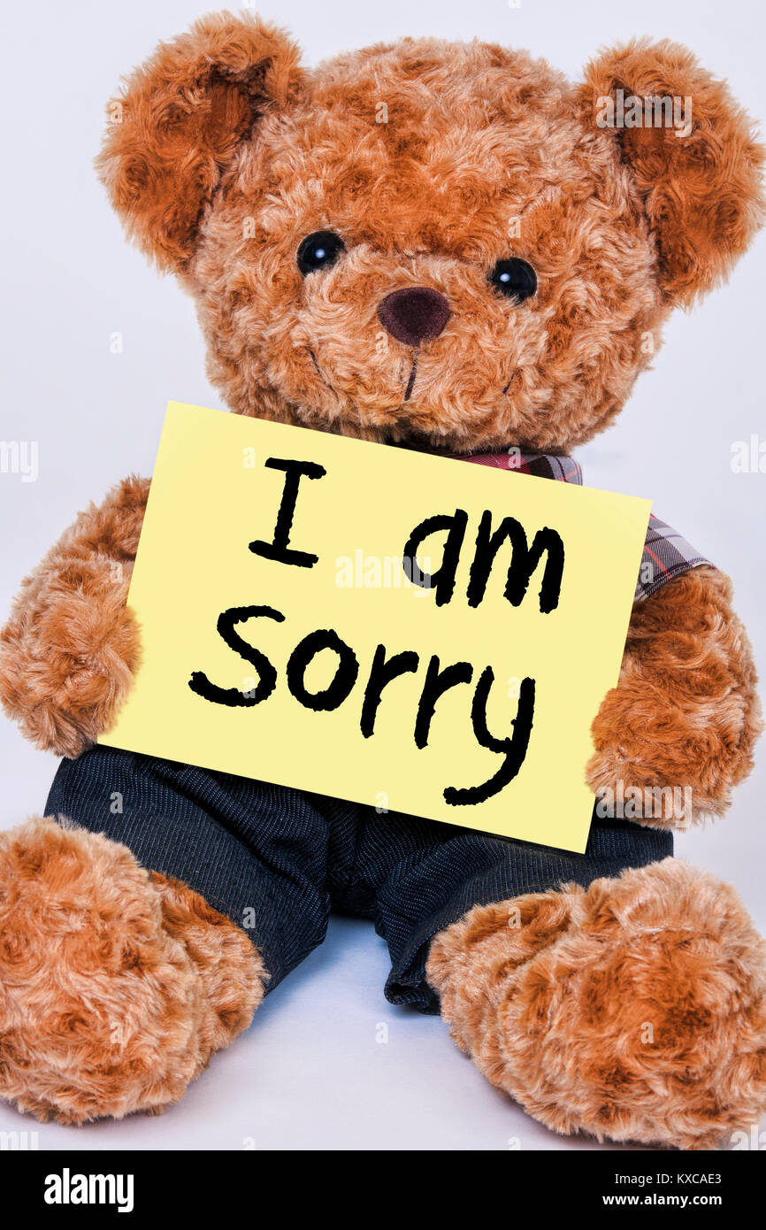 Cute teddy bear holding a yellow sign that reads I am Sorry isolated on a white background - Stock Image