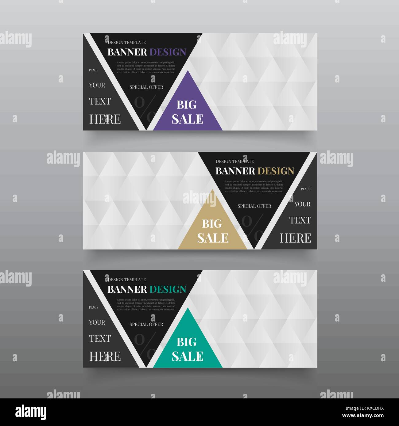 Triangle banner design templates. Web banner design vector. Website banner template with text, button. Business, Stock Vector