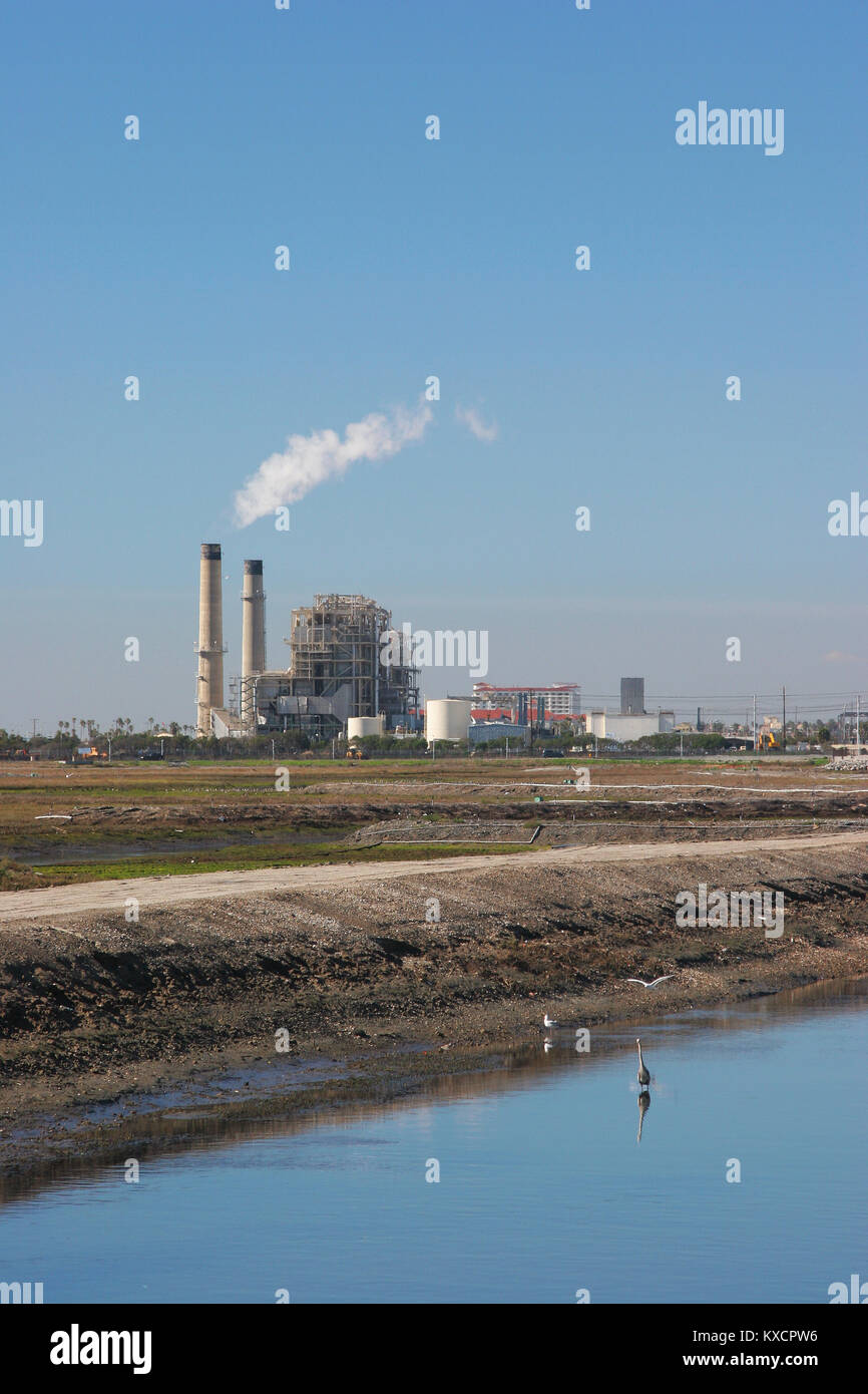 Huntington Beach Wetlands with great blue heron and AES electric utility in background near PCH Huntington Beach - Stock Image