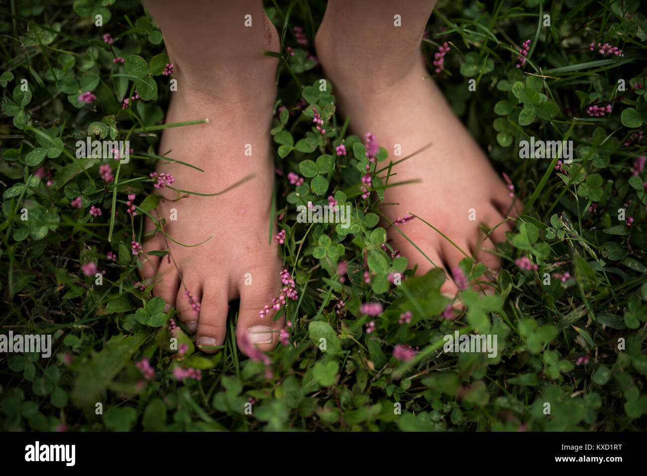 Low section of girl standing on plants at field - Stock Image