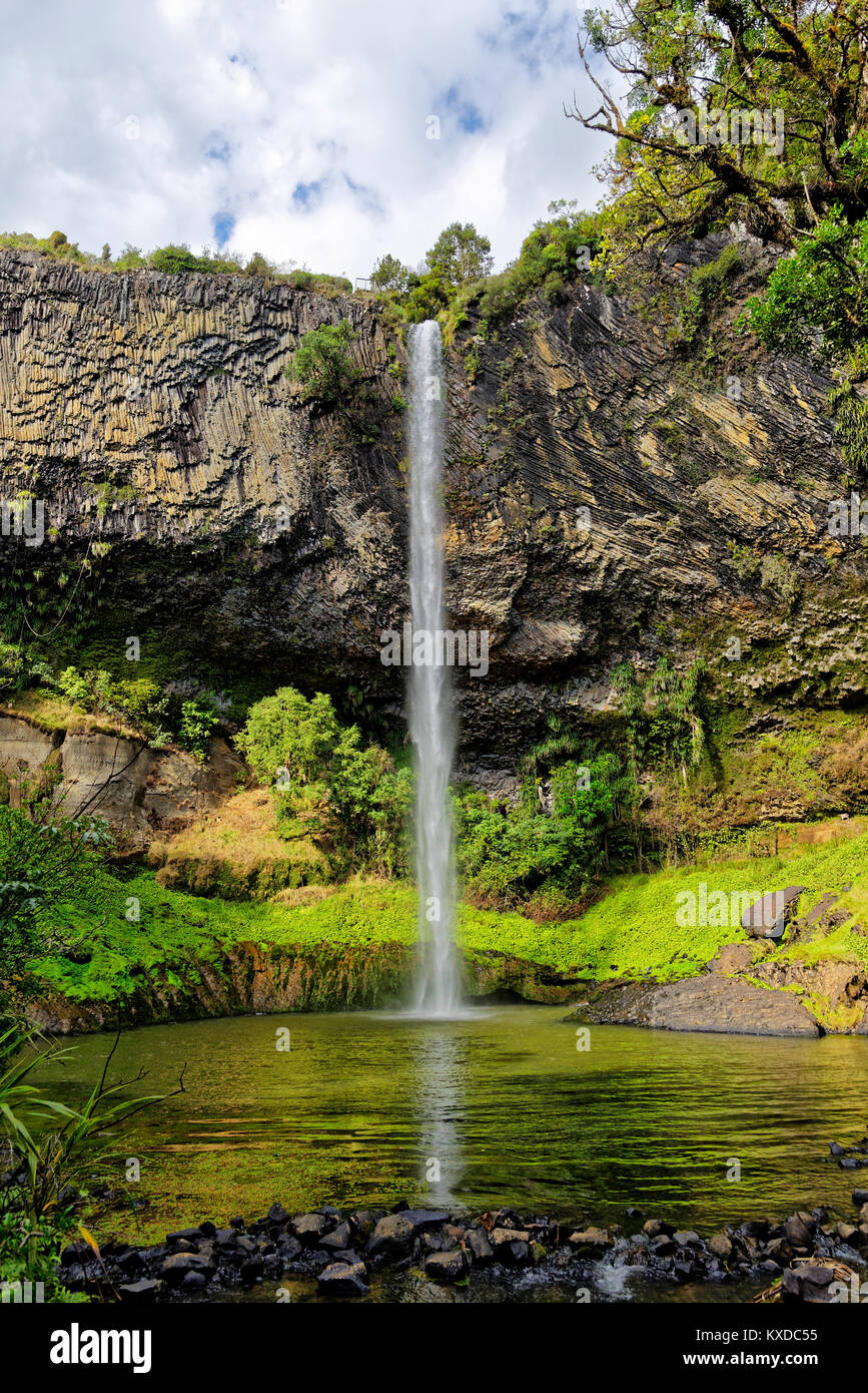 Wall of columnar basalt with waterfall Bridal Veil Falls,tropical vegetation,Pakoka River,Makomako,Waikato,North - Stock Image