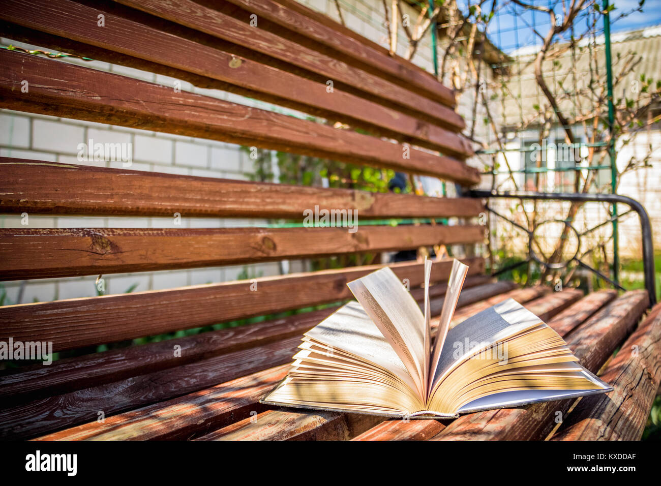 Wooden bench in the yard with her lying on the open book - Stock Image