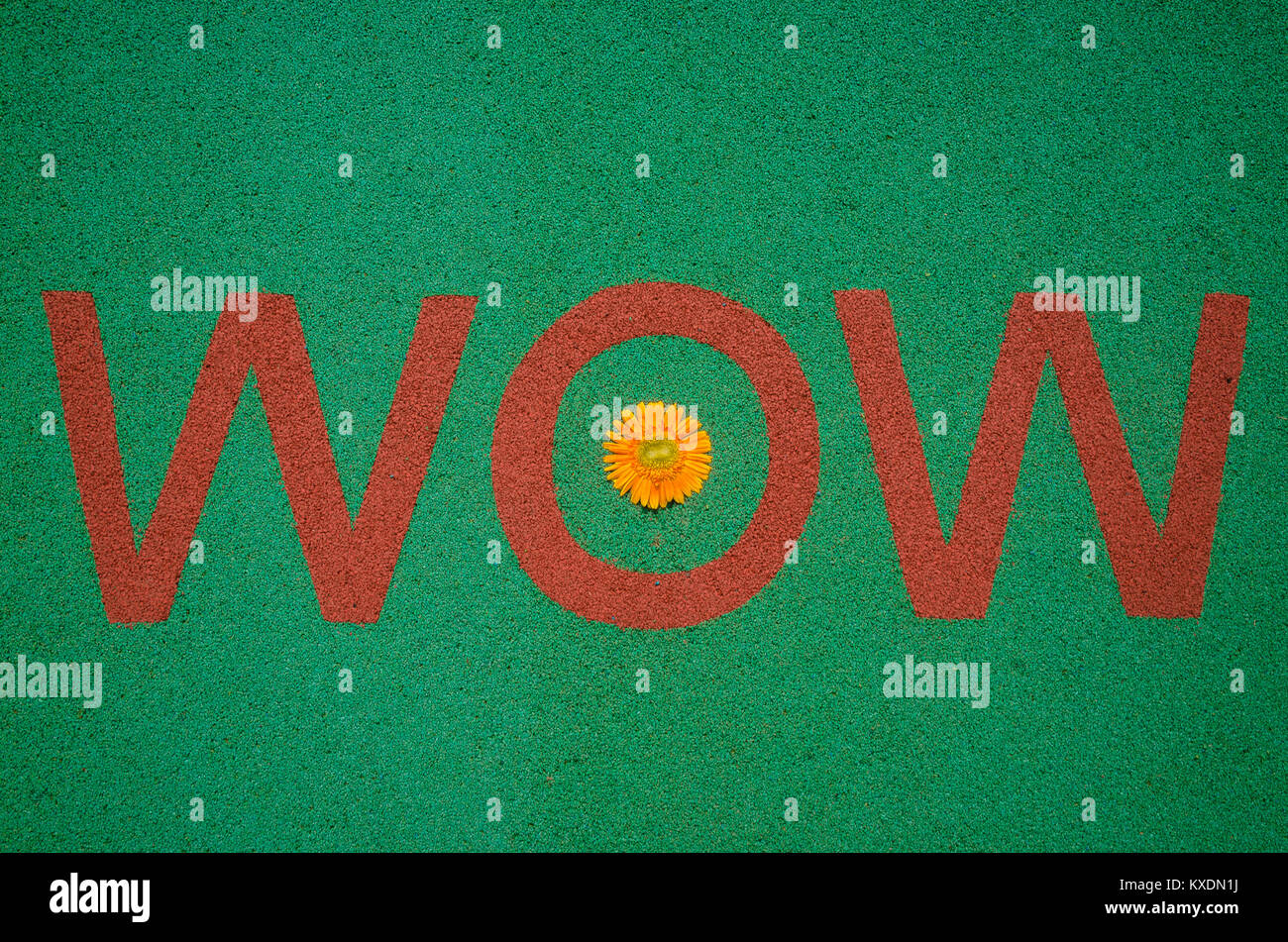 'WOW' painted in bold with red color and a flower head kept at its center on green synthetic rubber running - Stock Image