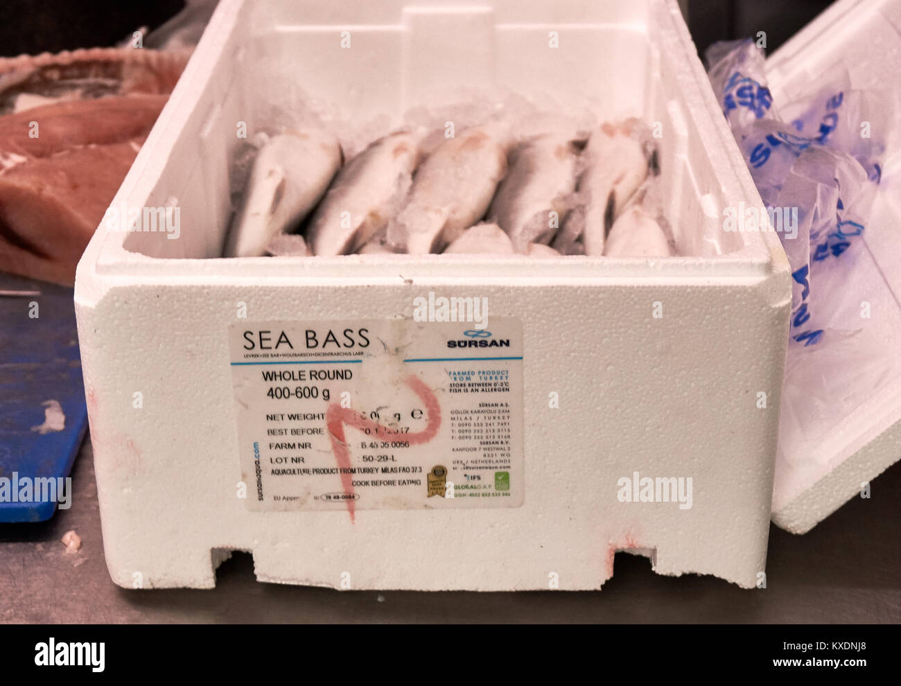 Farmed Turkish sea bass packed in a styrofoam box for sale at a