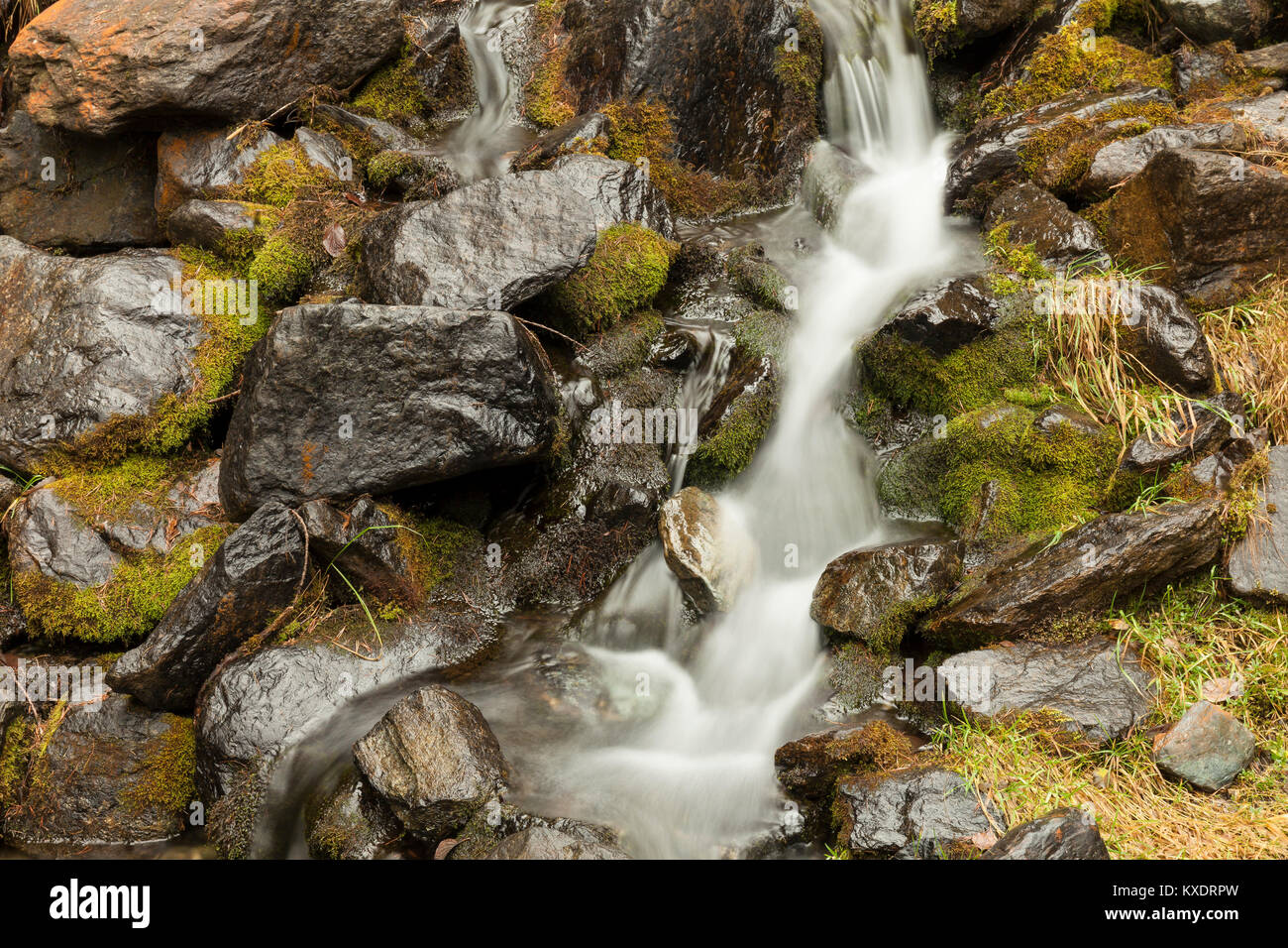 Small waterfall between rocks and moss, Aosta Valley, Italy Stock Photo