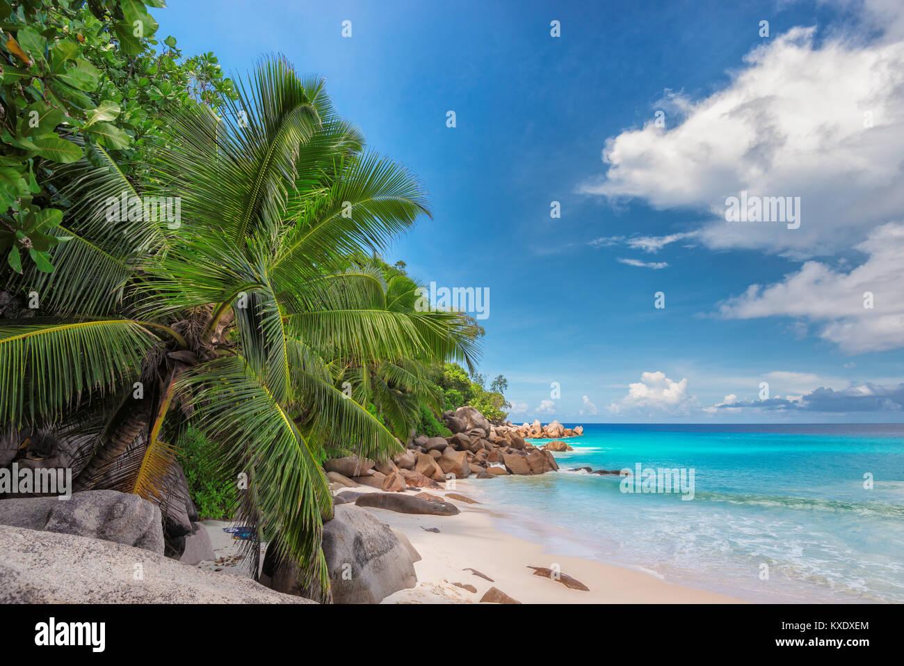 Paradise beach on Seychelles. - Stock Image