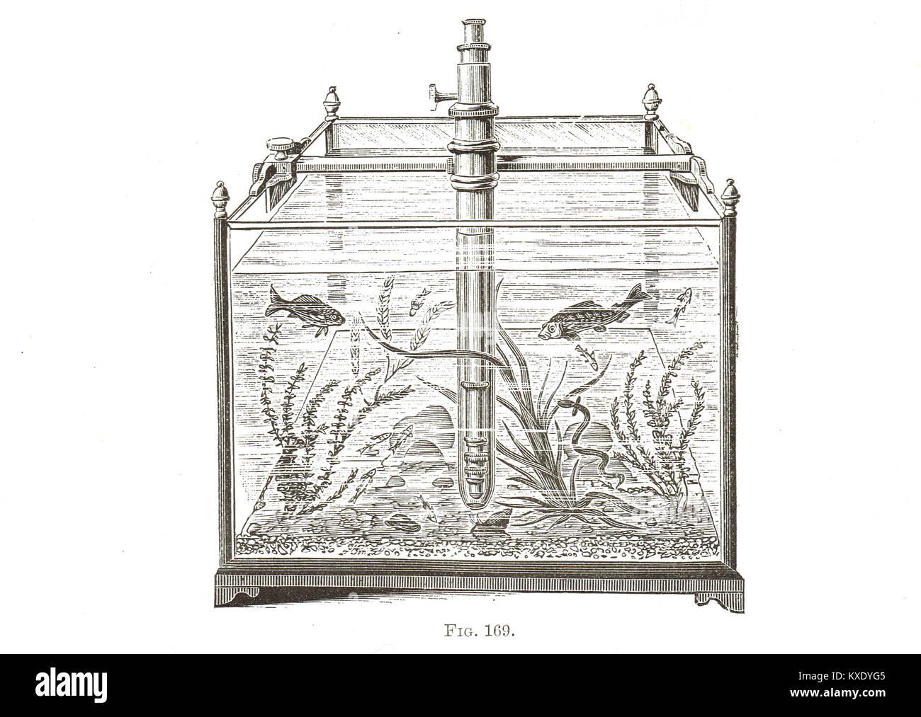J W Stephenson aquarium tank microscope - Stock Image