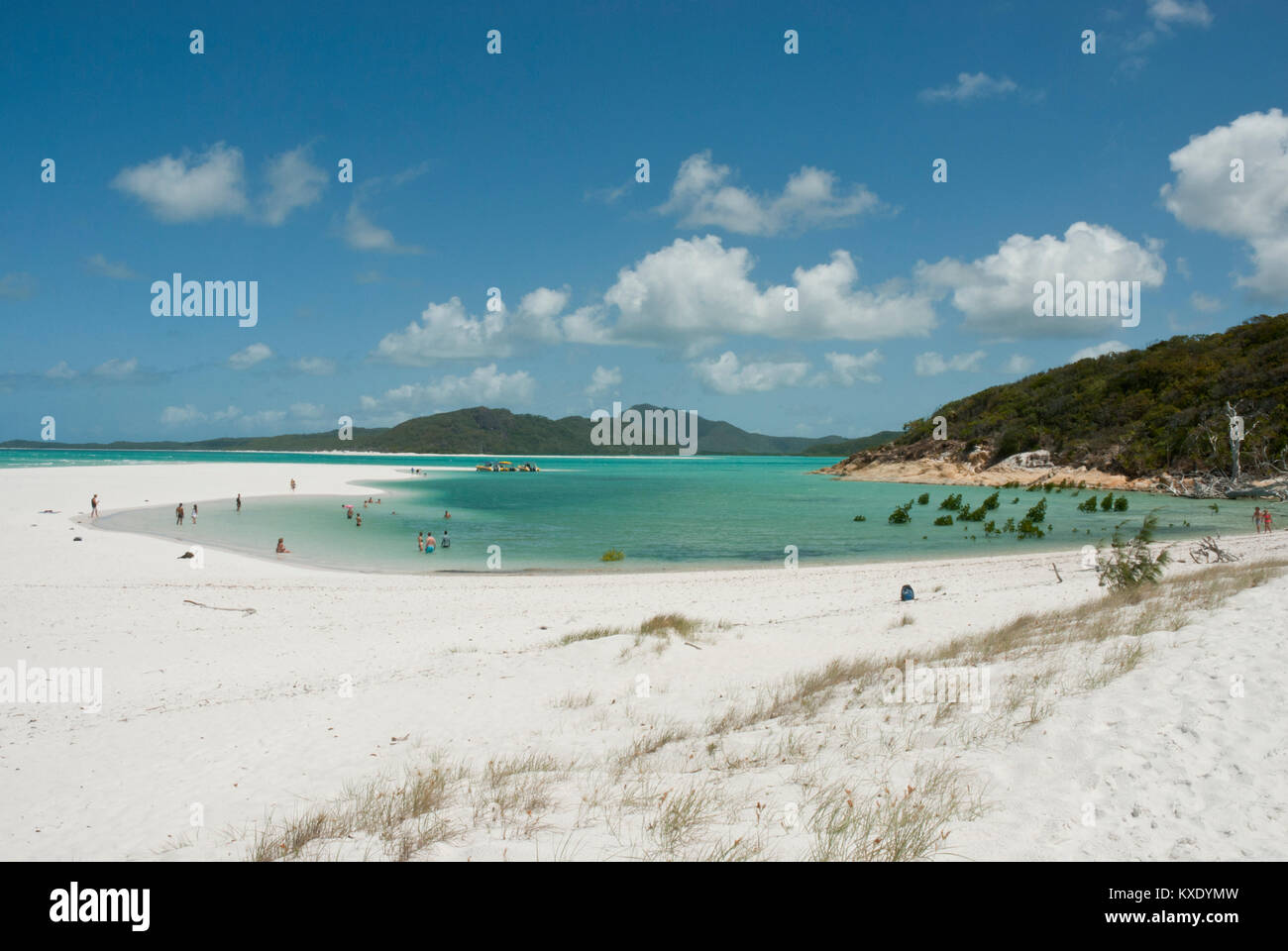 Pristine white sands of Whitehaven Beach, Whitsundays, Queensland with amazing emerald sea, Coral Sea, blue skies - Stock Image