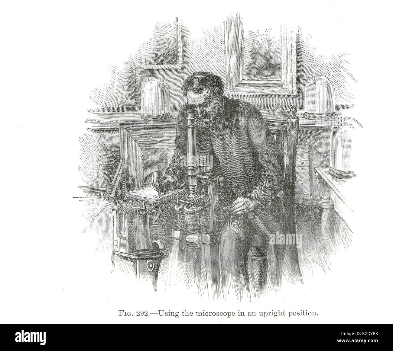 Victorian man using microscope in an upright position - Stock Image