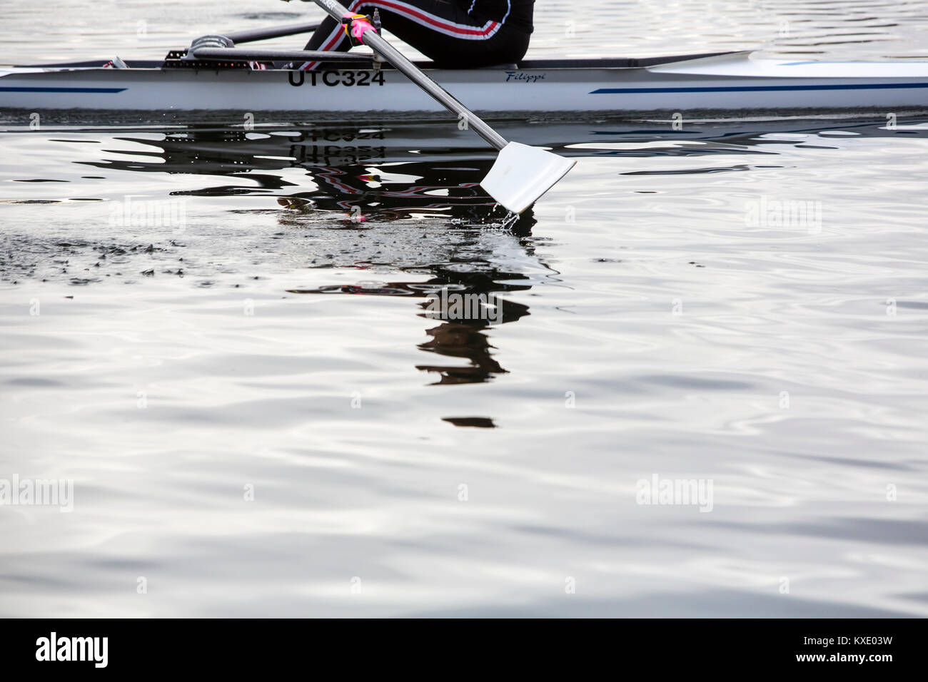 A single rower on a river skulling through the gently rippling water. - Stock Image