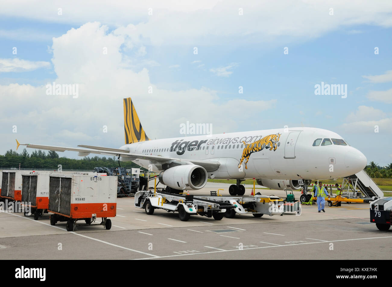 Tiger Airways plane parked at the airport for food and fuel resupplies before her next flight. - Stock Image