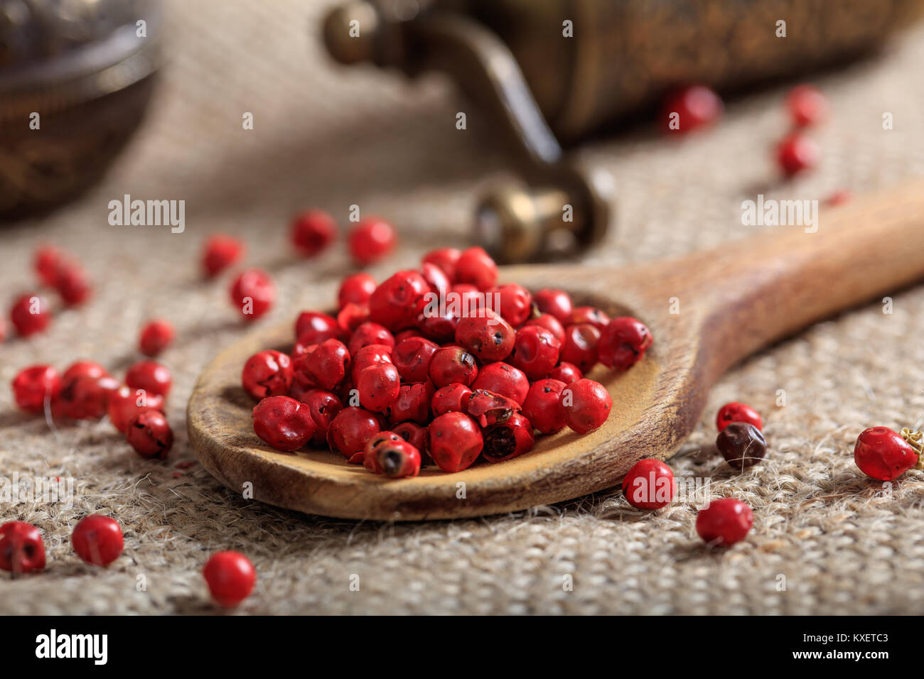 Red pepper seeds in a wooden spoon - Stock Image