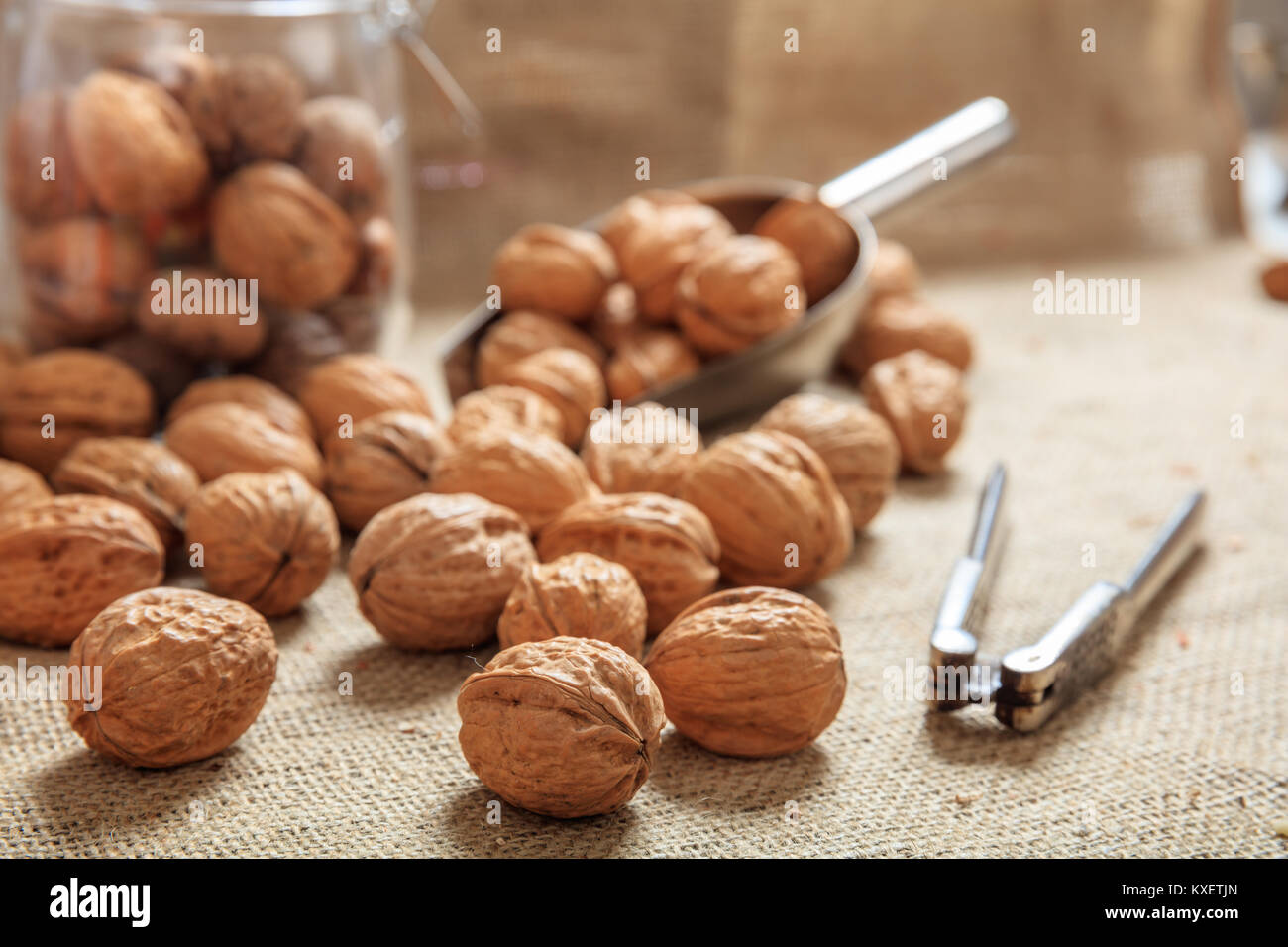 Walnuts, a scoop and an old nutcracker on a table - Stock Image