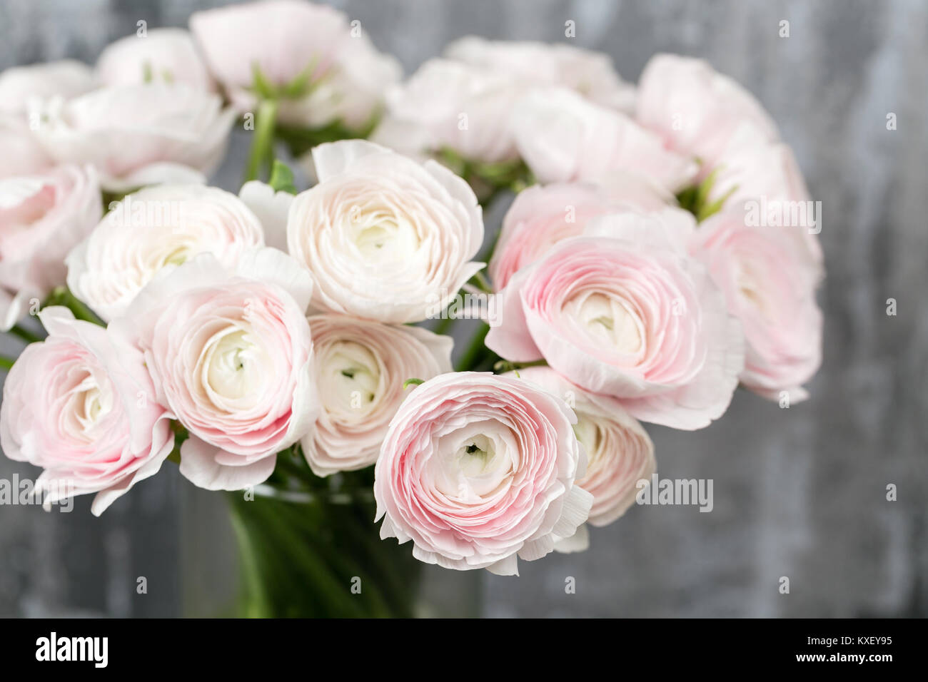 Vase With Beautiful Bouquet Of Ranunculus Flowers On Wooden Table Stock Photo Alamy