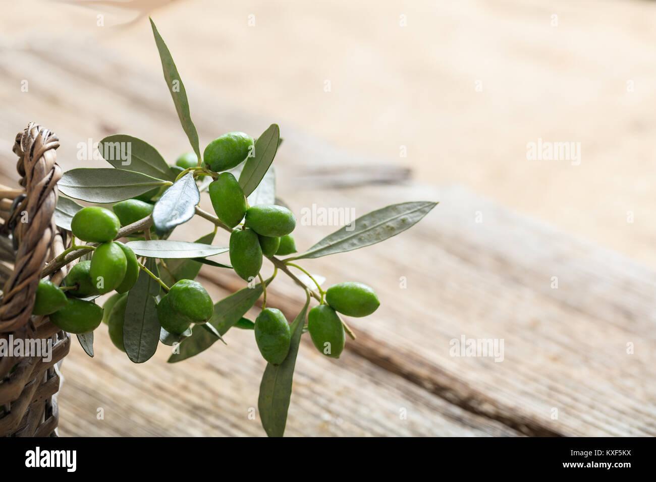 Olive twig on a basket - Stock Image