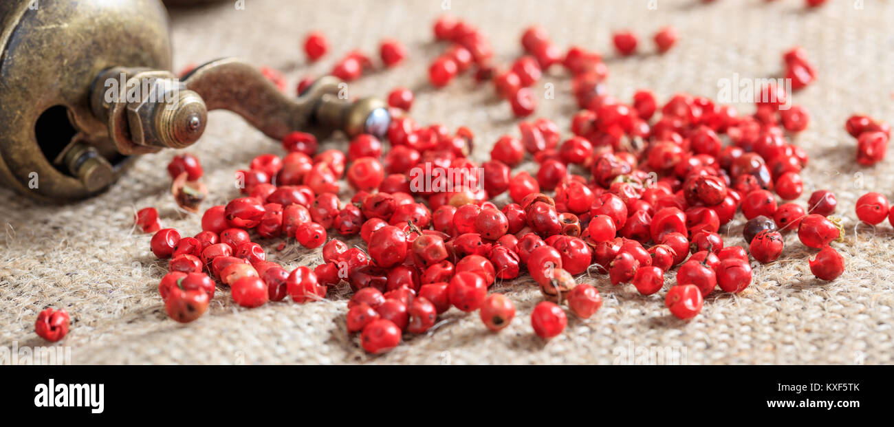 Dried red pepper spice on burlap - Stock Image