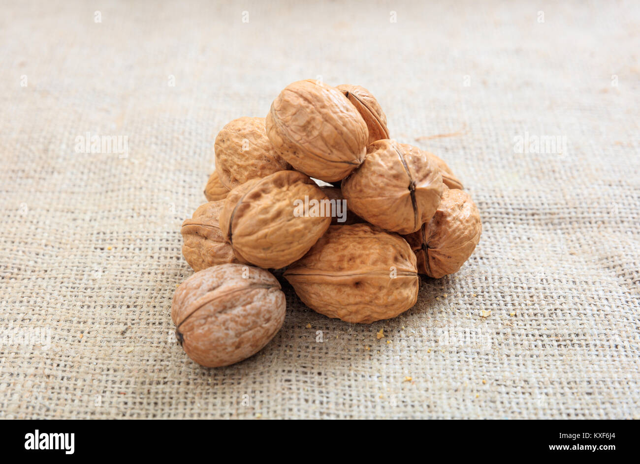 Walnuts in shell on a burlap - Stock Image