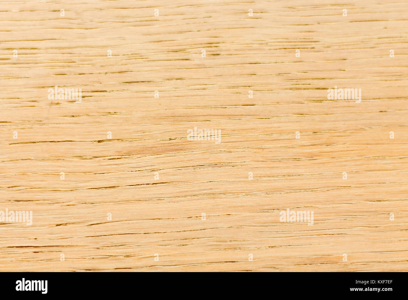 Concept Background wood for general use Stock Photo