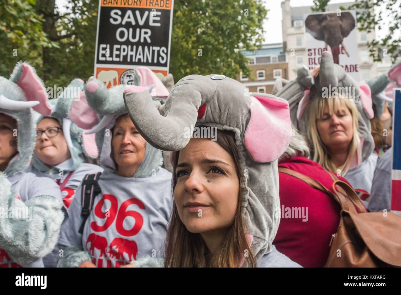 At the front of the Global March for Elephants and Rhinos in London were 96 peole in elephant costumes, the number - Stock Image