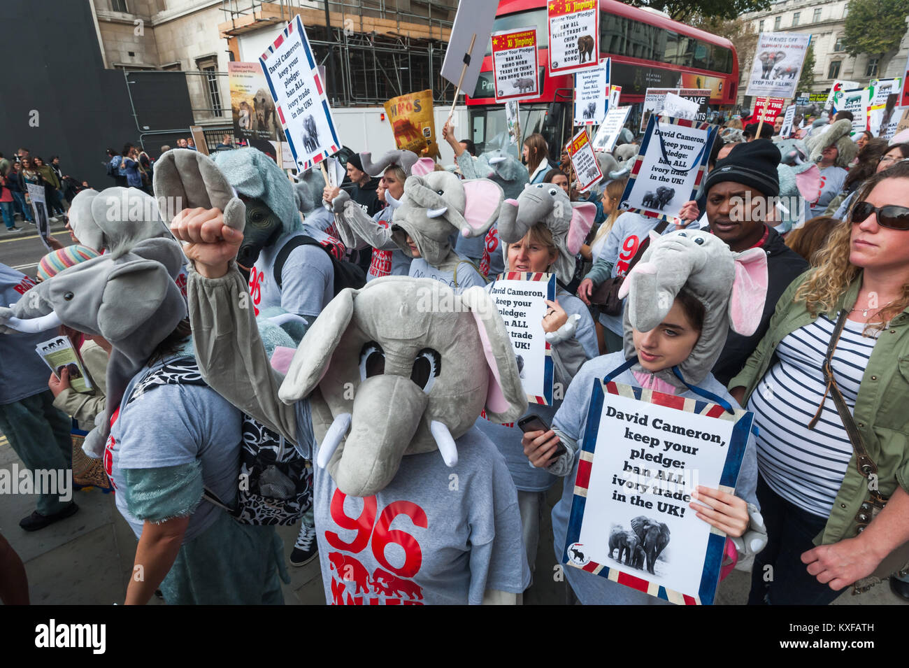 Some of the 96 marchers in elephant cosutmes representing the number of Elephands being killed each day for their - Stock Image