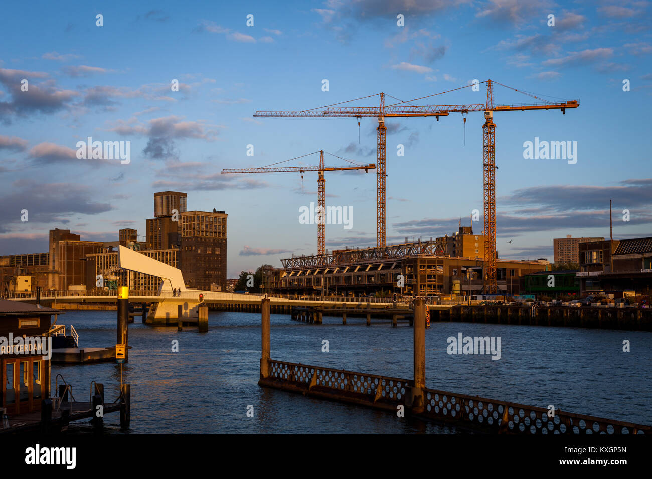 Three construction cranes lit by the sun neat Katendrecht, Rotterdam in The Netherlands. - Stock Image