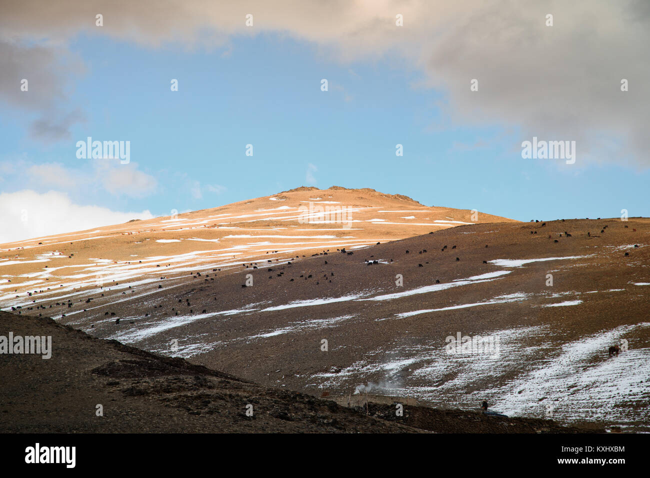 Mongolian landscape snowy mountains snow winter cloudy goat herd Mongolia Stock Photo