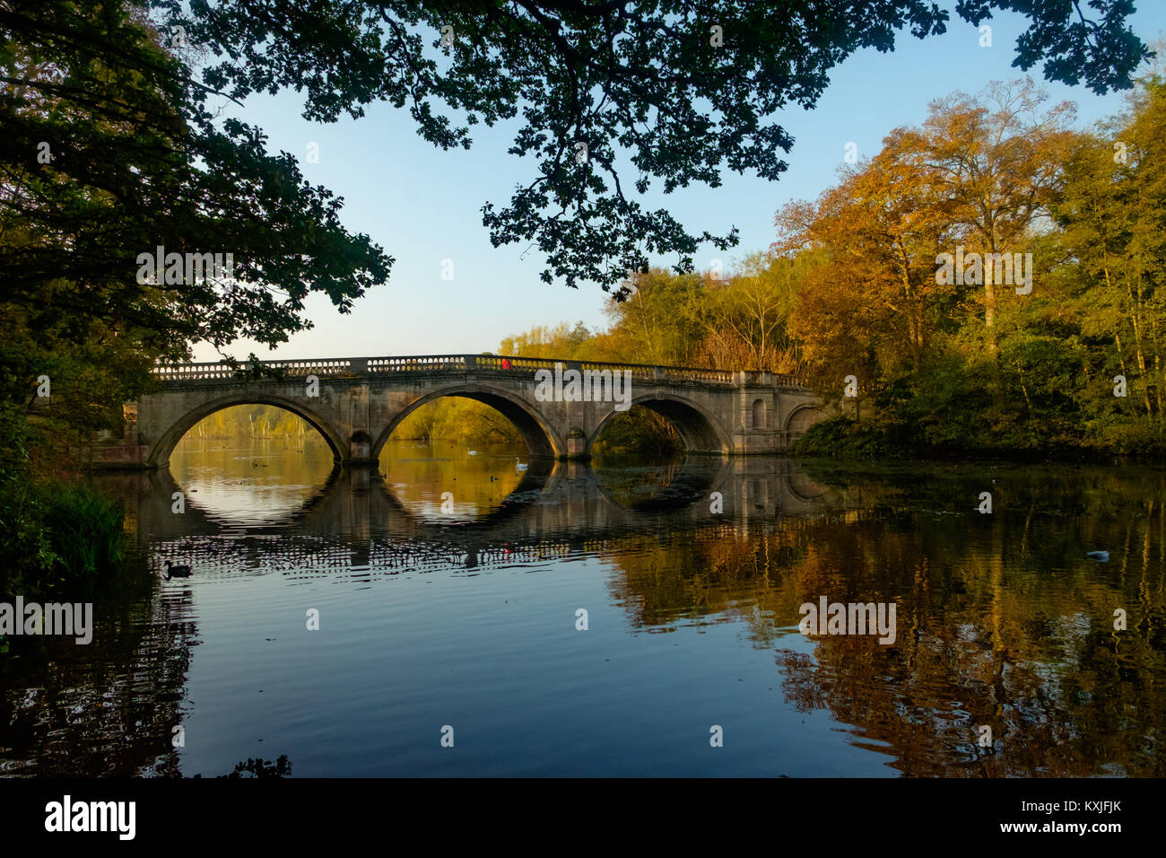 Clumber Park in Nottinghamshire - Stock Image