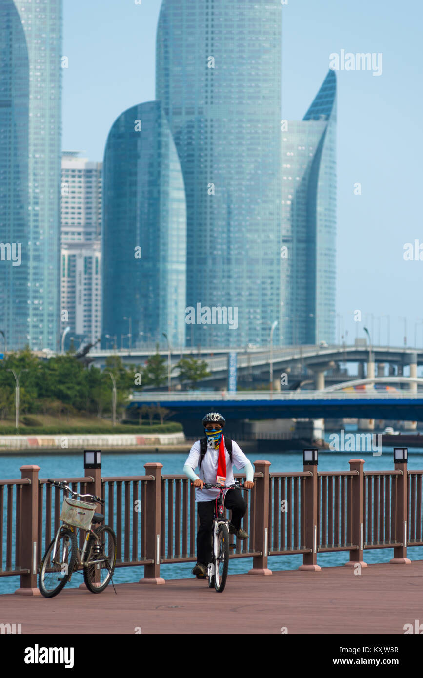 South Korean cyclist in front of Suyoung river with Centum park towers to the rear. Busan, South Korea. - Stock Image