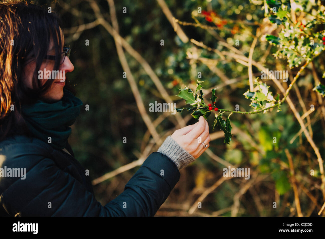 Girl holding an Irish female holly branch with spiny leaves and red berries - Stock Image